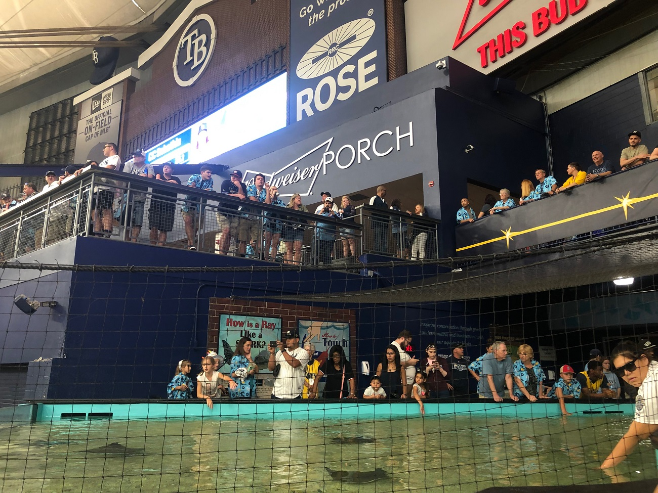 Rays Party Deck