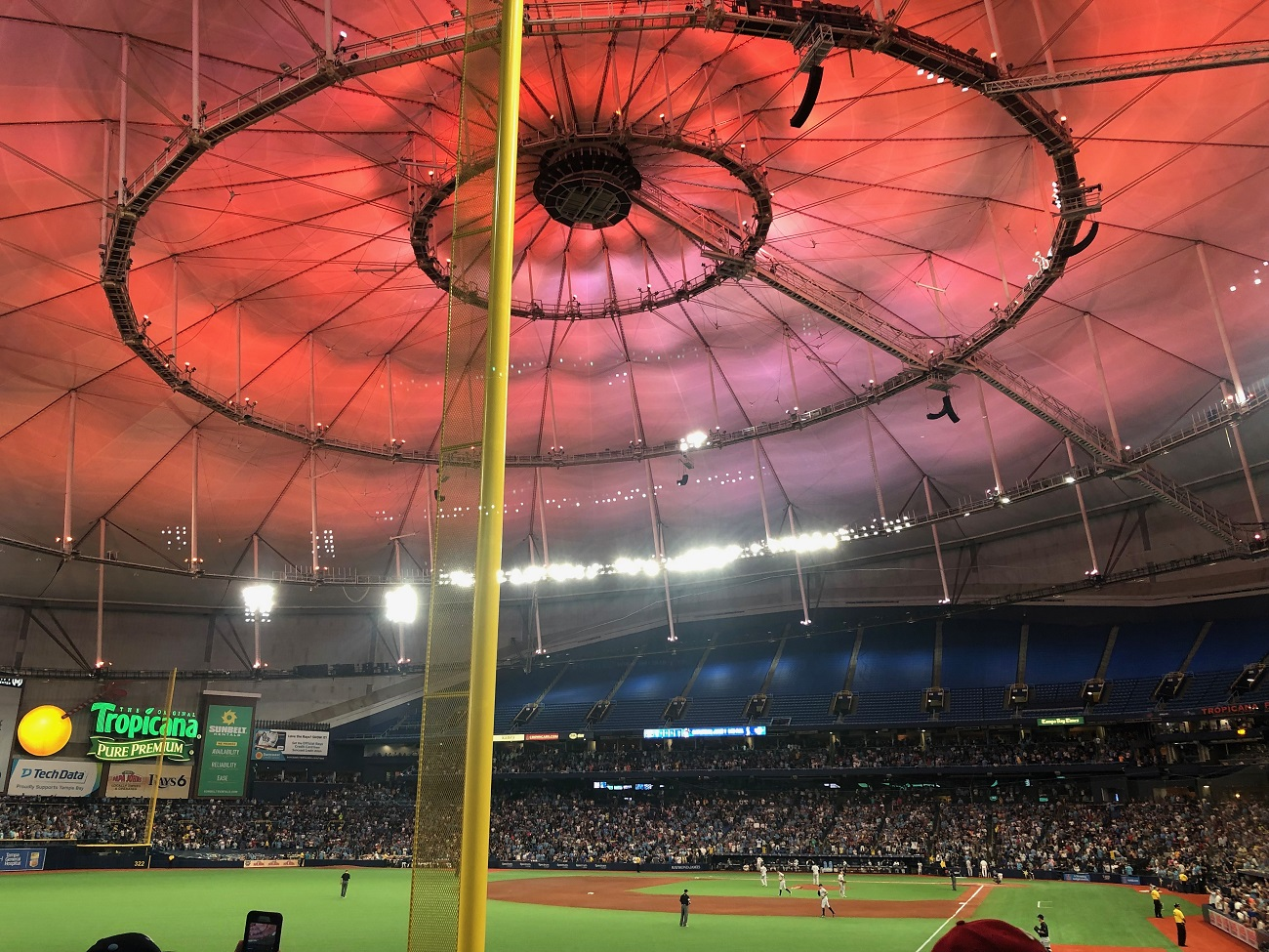 Red Roof at Tropicana Field