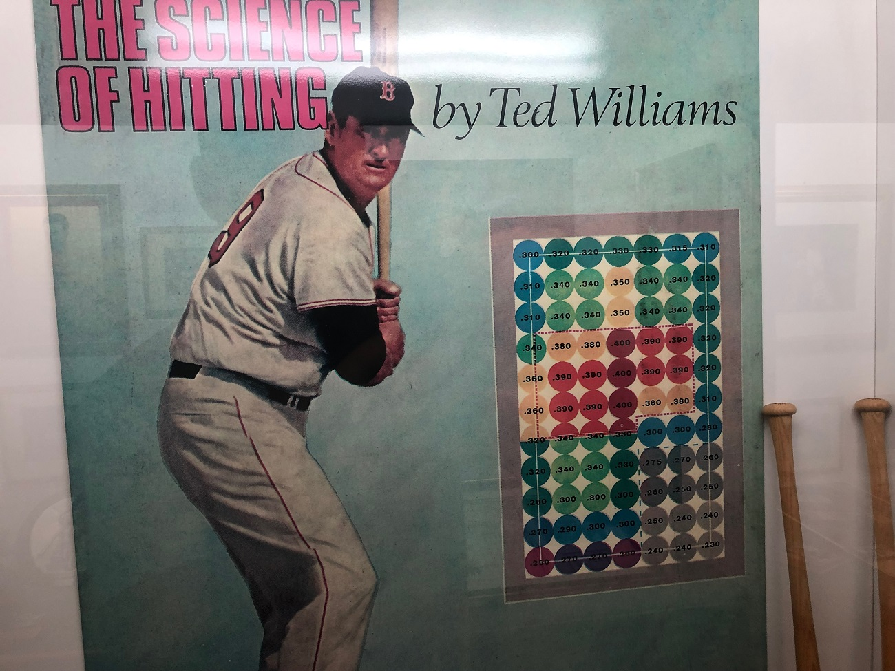 Ted Williams Hitting Zone at Rays Stadium