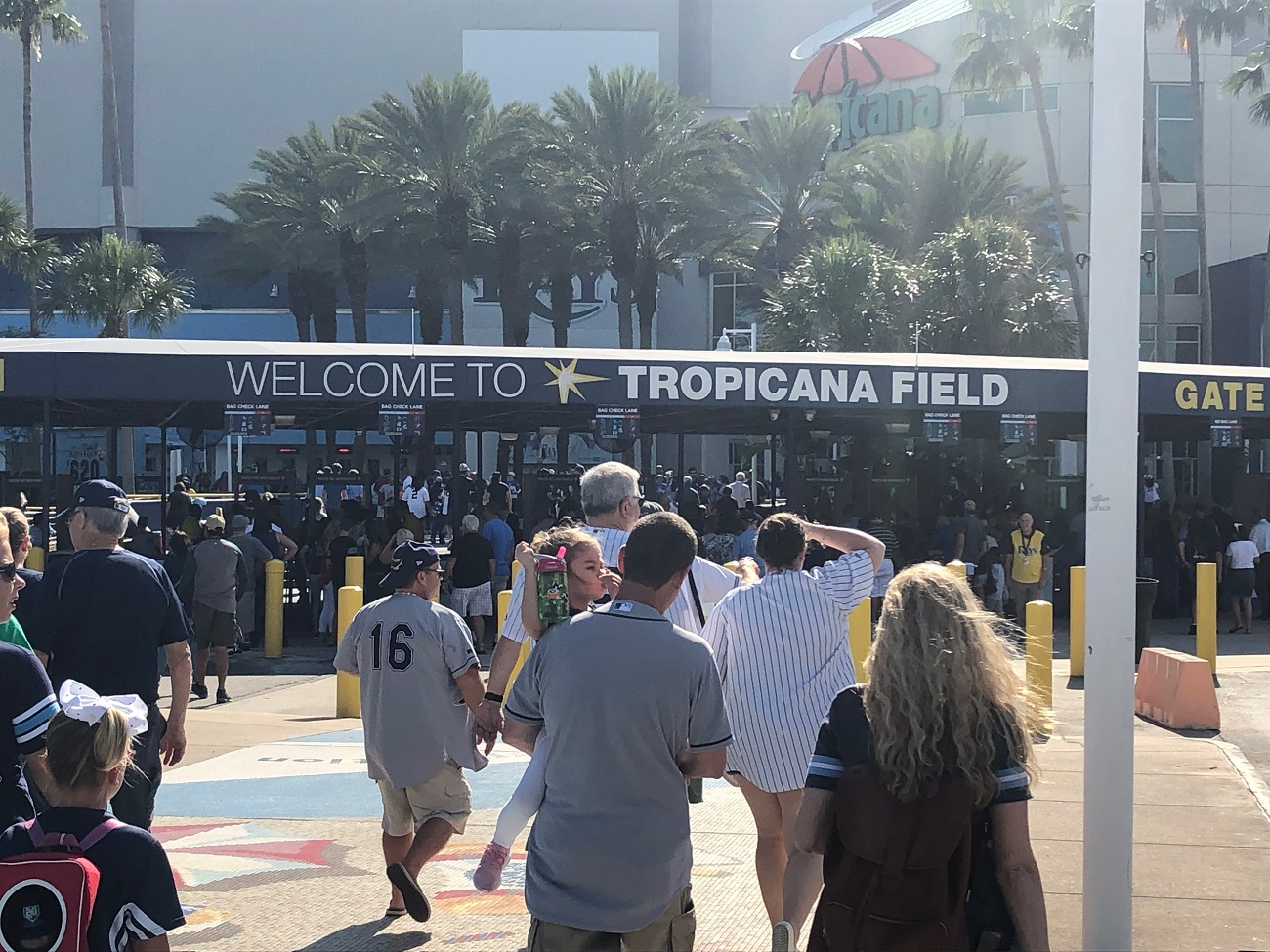 Walking to Tropicana Field