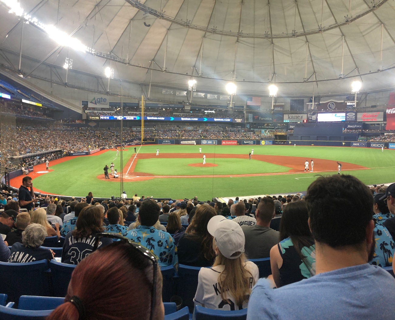 Tropicana Field with the Netting