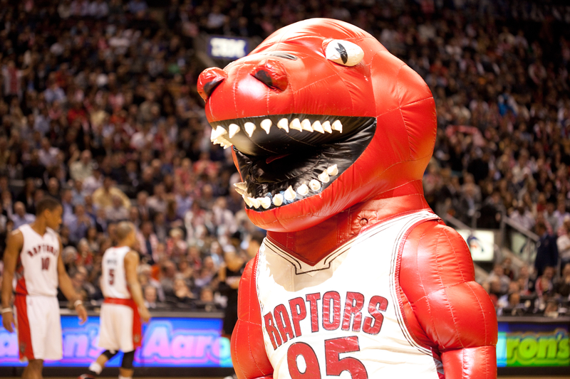 Why Is Toronto's Basketball Team Called the Raptors