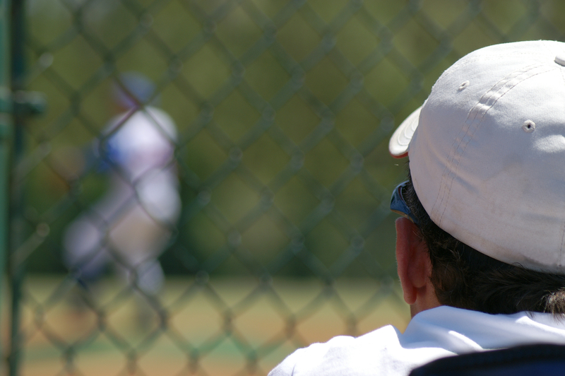 what is a baseball scout